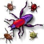 beetle-bugs-e5
