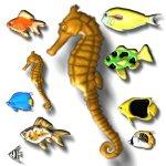 fish-a1