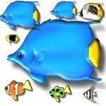 fish-e4