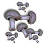 veggied-mushrooms-a1